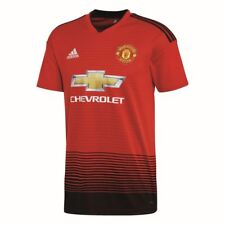 Manchester United Adidas Trainingsanzug Champions League (15 16)