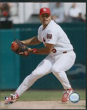 Albert Pujols Fielding St. Louis Cardinals 8x10 Photo With Toploader