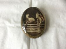 Attractive Pellini Horse Race / Jumping Themed Resin Pin Brooch