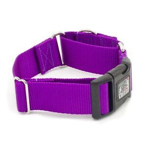 "1.5 Inch Width Martingale w/ Buckle Dog Collar 1.5"" Width Dog Collars"