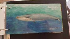 Guernsey Mint Stamps 23.2.11 presentation pack Endangered Species - Blue Whale