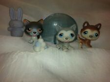 Littlest Pet Shop * LPS * Sale on #68 #70 #174 Husky Family Mom Dad Baby Snow
