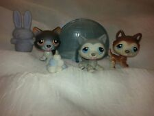 Littlest Pet Shop * LPS * #68 #70 #174 Husky Family Mom Dad Baby Christmas Snow