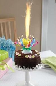 Musical Floral Spinning Birthday Candle With Sparkler Center & 12 Lit Candles