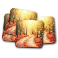 4 Set - Forest Trail Coaster - Autumn Woodland Nature Trees Camping Gift #14810