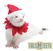 Marshall Ferret Pet Fashions - Santa Suit - Dress Your Ferret for The Holidays!
