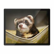 Placemat Mousemat 8x10 - Ferret Hammock Pet Rodent Animal #16329