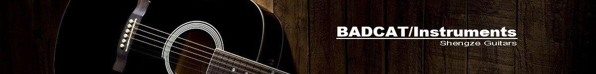 SHENGZE/Guitars