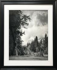 "Ansel Adams ""El Capitan"" Custom Framed NEW lithograph ART Yosemite National Park"