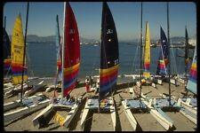082022 Hobie catamarans PARCO ACQUATICO A4 FOTO STAMPA
