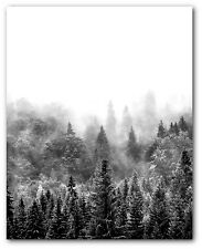 Forest Print, Black and White Forest Art, 8 x 10 Inches, Unframed
