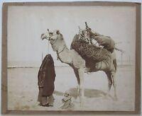1880c BEDOUIN WOMAN WITH CAMEL Egypt foto Zangaki albumina 28x22cm Beduina