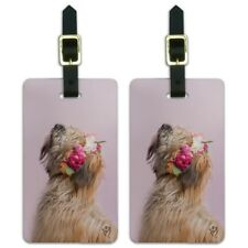 Soft Coated Wheaten Terrier Dog Flowers Luggage Id Tags Cards Set of 2