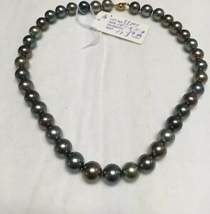 "10.1x11.9. Multi Color Tahitian South Sea Pearls. 17"". Bright Colors"