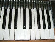One Gem P Combo Organ Key, Should Also Fit Vox Jaguar V304, Doric, Howard, Etc.