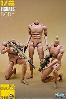 TOYSCITY BD01 1/6 Narrow Shoulders Body Model Scale Flexible Action Figure Toys
