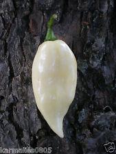 (10) WHITE BHUT JOLOKIA (GHOST PEPPER) SEEDS