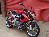R&G RACING Crash Protectors - Benelli TNT 2004- / 1130 Cafe Racer *BLACK*