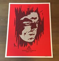 Shepard Fairey Obey DECODING DISINFORMATION Signed Numbered Screen Print 108/200
