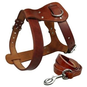 Genuine Leather Dog Harness and Leash Soft Dog Vest for Small Medium Large Dogs