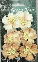 AZALEAS 6 BEIGE Paper flowers with White centre 45mm Across Green Tara GT D
