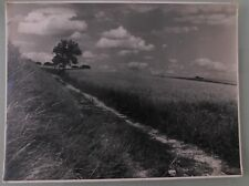 PHOTO D'ART DE 1954.ARBRE .TERRE FERTILE DE G.TEISENTZ.29x39 cm.SNAPSHOT VINTAGE