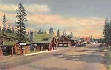 Yellowstone National Park Montana Street Scene Log Cabin Antique Postcard K21968