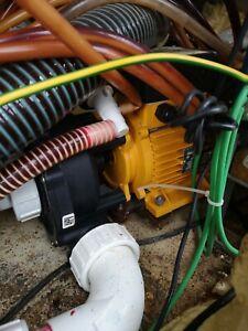 Artic Spa Pump 2 Speed
