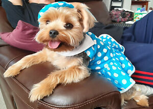 Dog Dress Skirt with Collar, Easy Wear