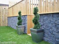 2 Best Artificial 3ft 90cm Topiary Cedar Spiral Outdoor Conifer Trees alt Bay