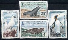 TAAF 1960 19-22 ** POSTFRISCH TADELLOSER SATZ ROBBEN + VÖGEL 120€(I2284