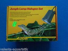 Lucky Reptile Jungle Lamp Halogen Set wasserdichte Niedervoltleuchte Terrarium