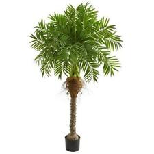 Nearly Natural 5.5� Robellini Palm Artificial Tree