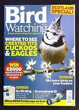 Bird Watching, April 2013, Where To See Crested Tits, Cuckoos & Eagles