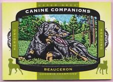 2018 Goodwin Champions Canine Companions Beauceron Herding Dog Patch #Cc-161