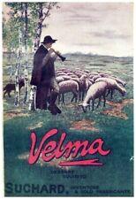 PUBBLICITA' 1916 VELMA SUCHARD CIOCCOLATO CHOCOLATE PASTORE PECORE  MONTAGNA