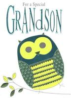 Special Grandson Birthday Foiled Greeting Card Second Nature Cards