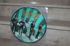 the rolling stones / golden album ( japan 180g) picture disc