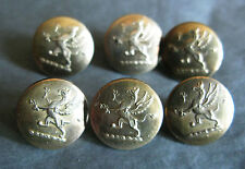 GREAT SET OF SMALL VICTORIAN BRASS BUTTONS OF A DRAGON 15 - 16 MM DIAM