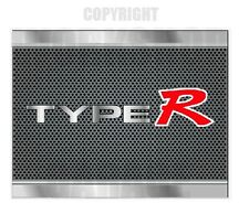 TYPE R - METAL LOOK TEXT - CARBON MESH LOOK Stickers
