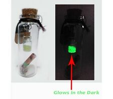 Message in A Bottle With Another Glow In Dark Bottle + Shells + Message Paper