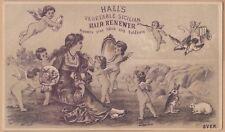 Victorian Trade Card-Hall's Hair Renewer-Nashua, Nh-Cherubs-Rabbits-Doves
