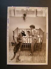 Glossy Press Photo 1981 Stow MA Red Acre Farm PJ Rielly Child is Crying Alert