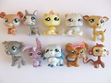 10 x LITTLEST PET SHOP CHAT CHIEN ANIMAUX LPS KITTY DOG CAT ANIMAL PETSHOP A