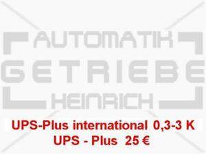 UPS extra amount for international customs area 0,3-3Kg