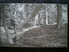 POSTCARD EPPING FOREST AMERSBURY BANKS SEPIA 1930'S ESSEX
