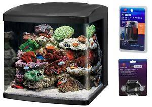 BioCube LED Tanks and Combo Kits (32 Gallon Tank Kit)