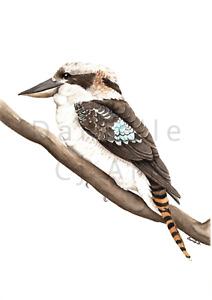 Watercolour Kookaburra Print - Australian bird prints