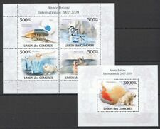 Polar Year, Bear, Birds, Snowy Owl, Comoros 2010 MNH MS+SS