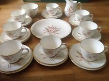 Wedgwood Crocus Pattern ( 27 Piece Tea Set ) 1955-1963 1st Quality.